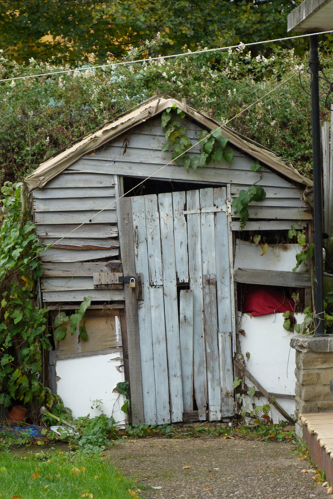 Tears from a small boy in a shed